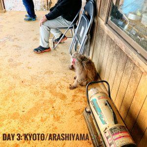 Day 3: Kyoto/Arashiyama