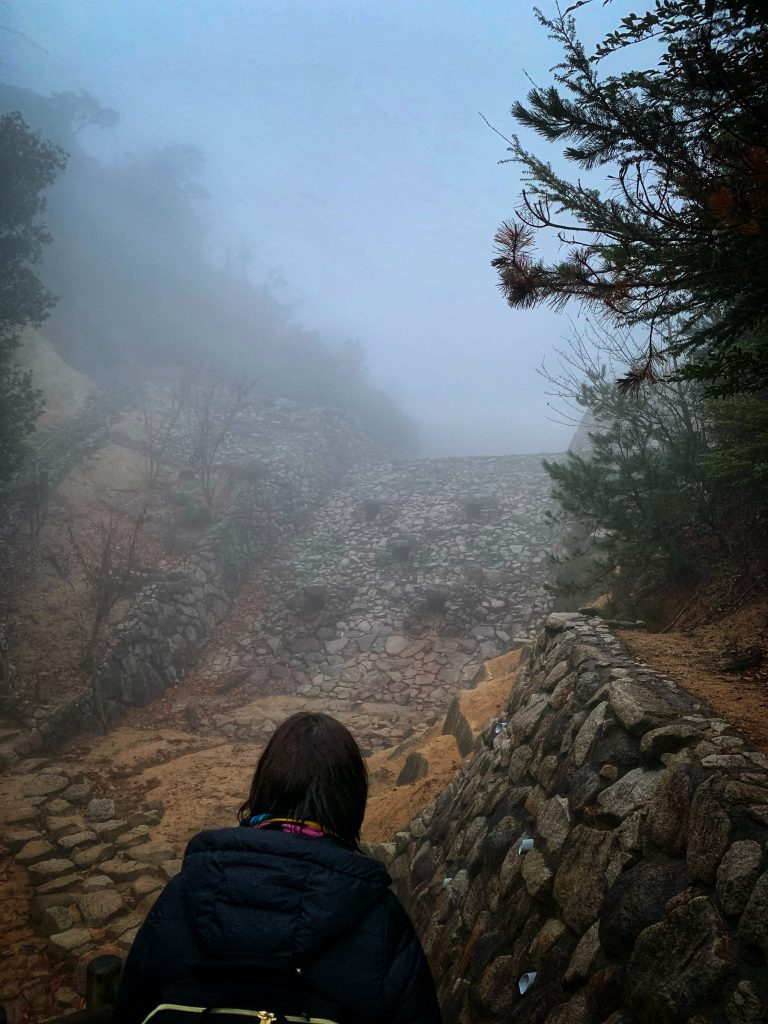 Giant wall of stone draped in fog.