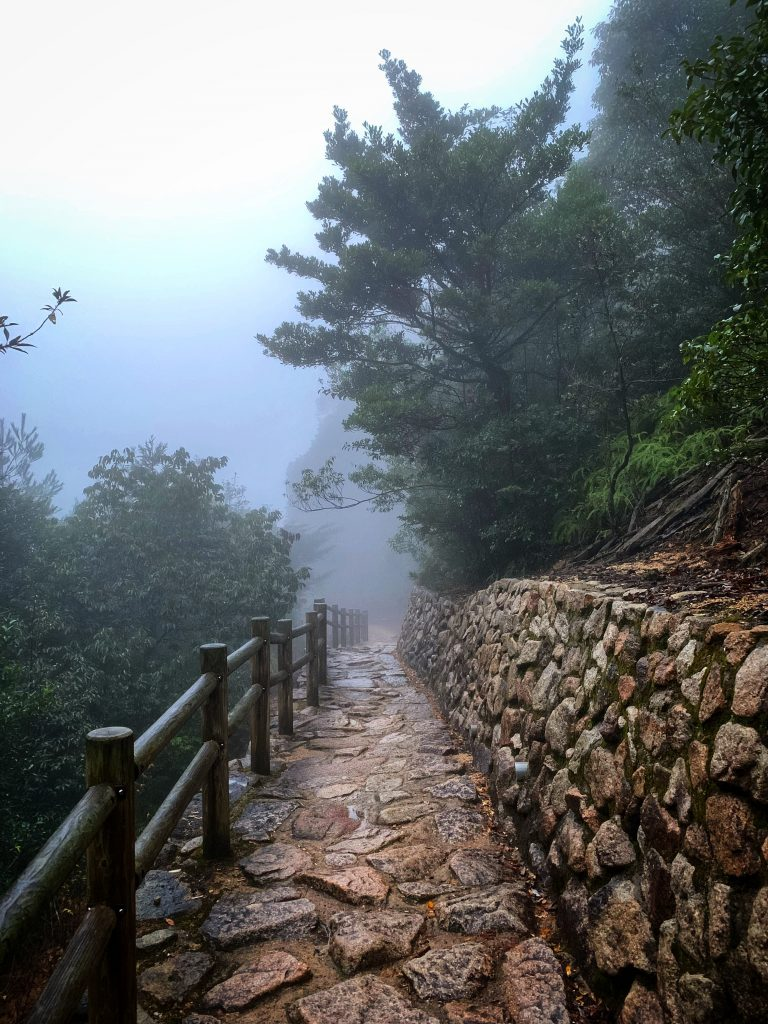 Path with fog